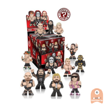 Mystery Mini Blind Box WWE
